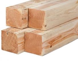 Lariks/Douglas palen onbehandeld (vers hout) 12x12x250 cm