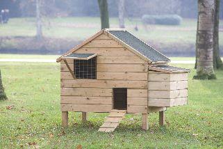 Kippenverblijf Lakenvelder