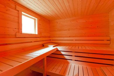 Maatwerk sauna 1